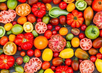 Tomates, les reines du potager