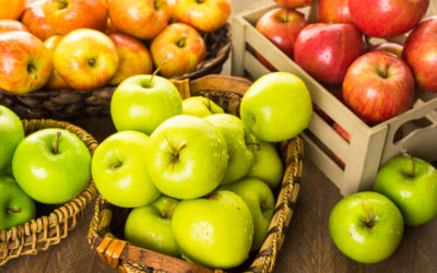 Nos variétés de pommes anciennes